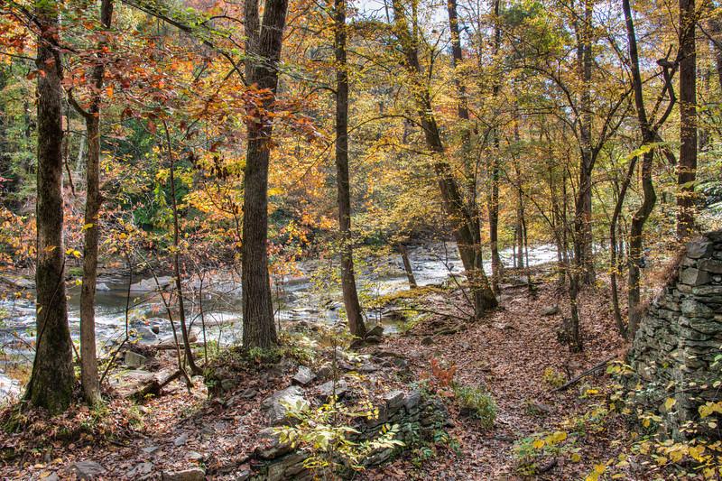 Scout Sope Creek Hike (16 of 22).jpg