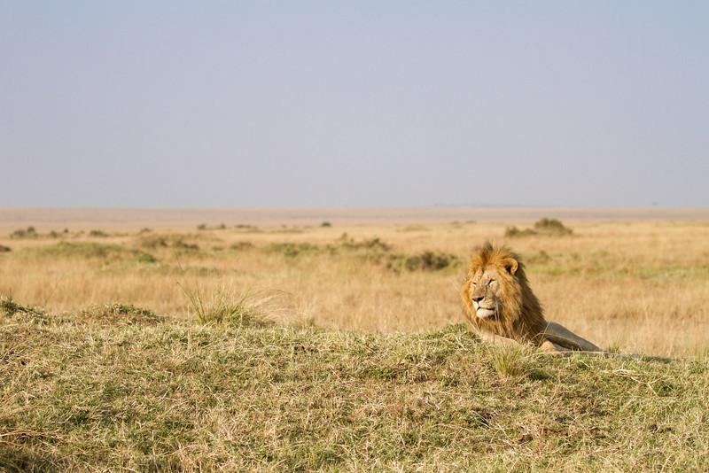 2013-Kenya2013-0721-0035.jpg