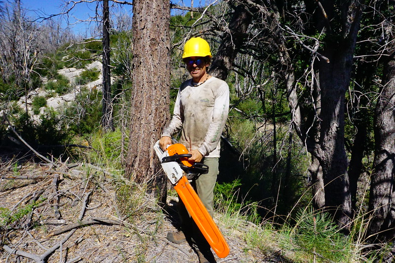 20170430027-Vetter Chainsaw Trailwork.JPG