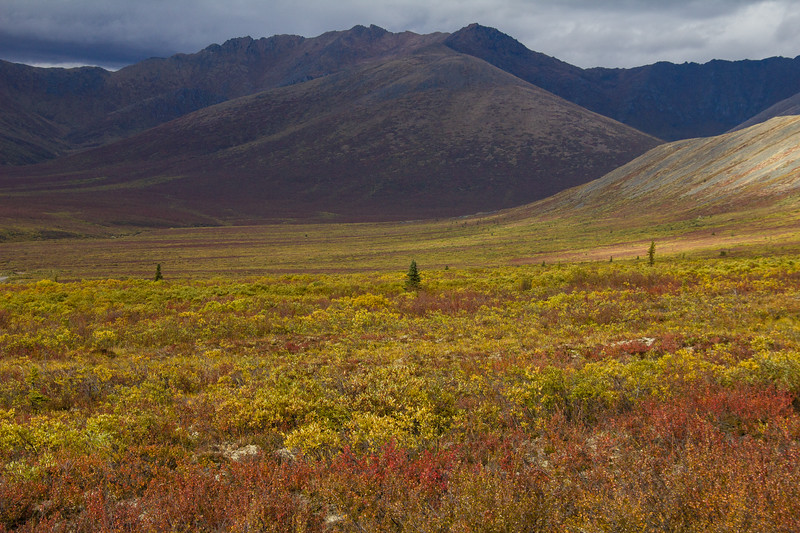 Blackstone Uplands, Dempster Highway 3