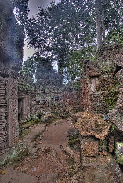Ruins at Ta Prohm in Angkor Wat