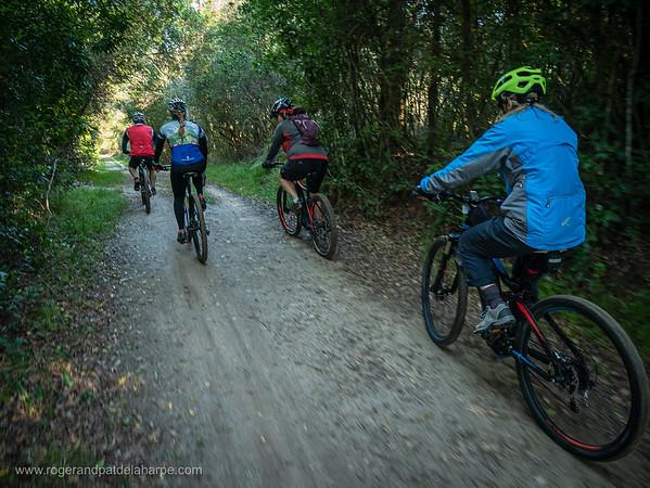 Harkerville Mountain Biking Routes Photo Gallery