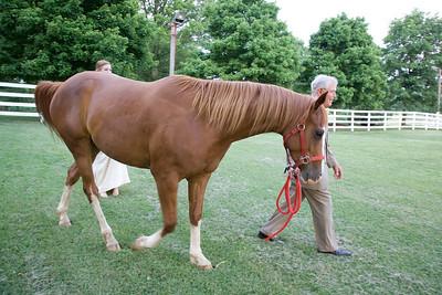 Horse and Isla