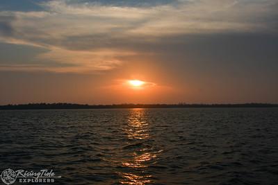 Sunset bird Rookery Boat Cruise - Bodnar