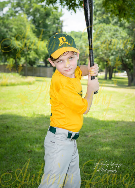 T-Ball Dragons - DCBSpring 2016