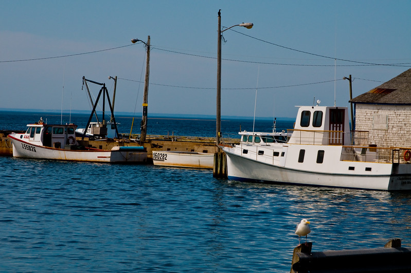 We stumbled upon a small shellfish processing plant. These boats were docked up alongside