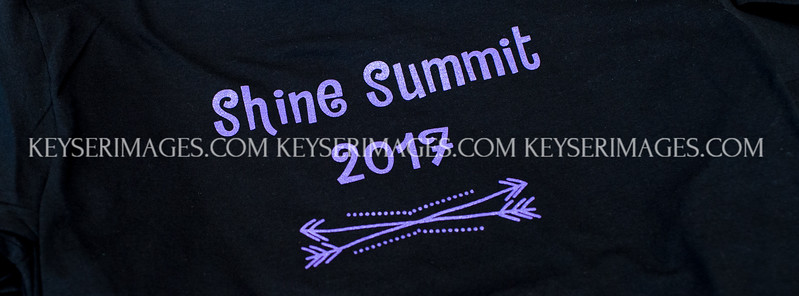 2017 Shine Summit