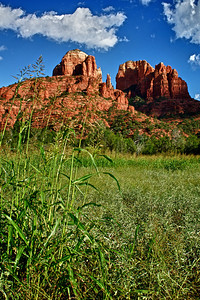 Deep grass and Cathedral Rock