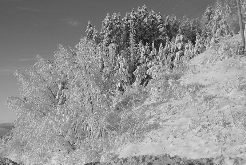 It's a winter wonderland as we leave.