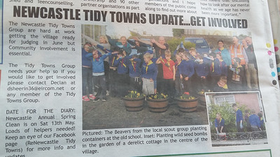 Beavers: 2017 Tidy Towns Day Newcastle