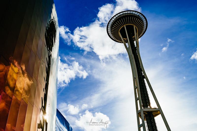 SeattleFPITeamFeb2020-29.jpg