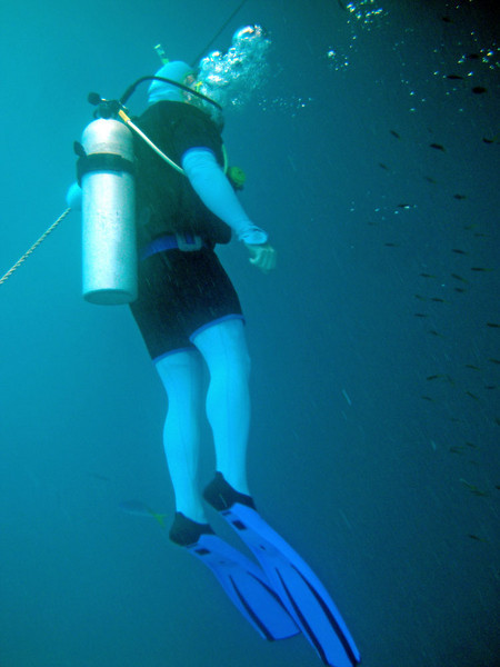Diver hanging off a guide rope.
