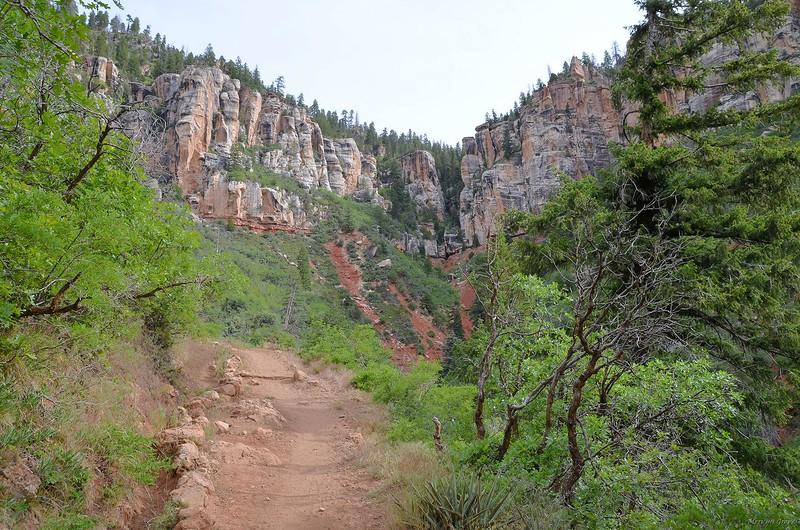 grand_canyon2_2014_043.jpg