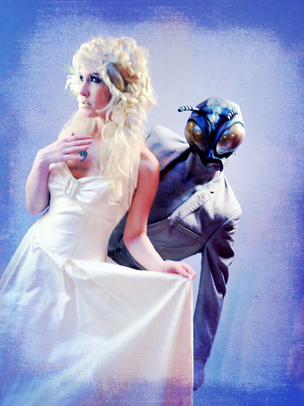 The fly wedding
