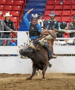 19MF Bull Riding