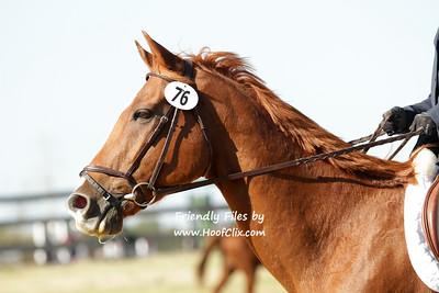 2011-10-08 USEA Horse Trial