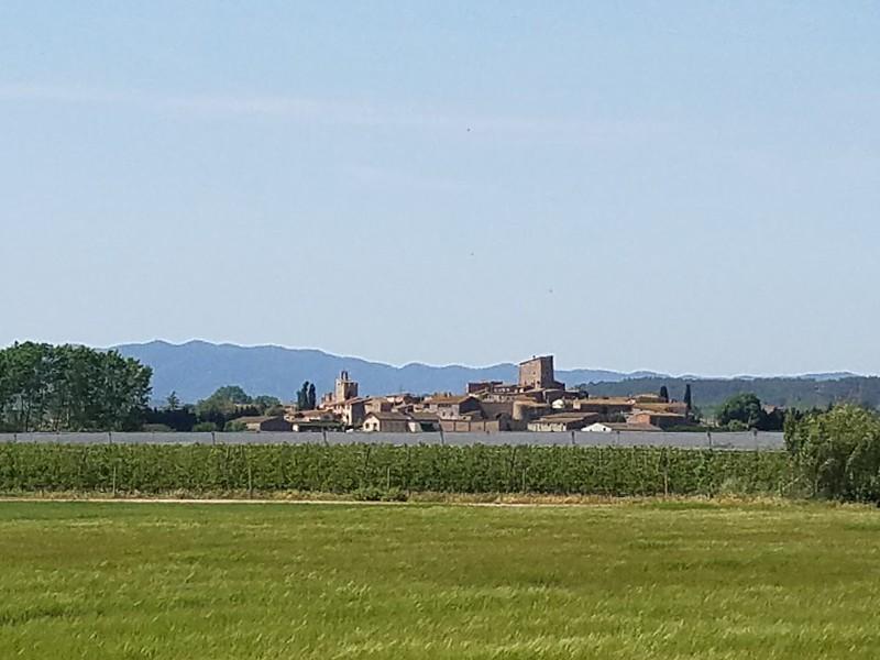 Vista from Day 3.jpg