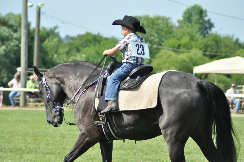 horseshow-sweetwater-0061.jpg