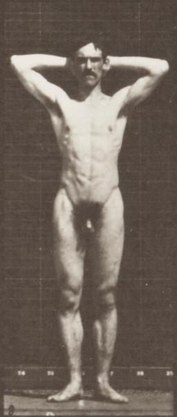 Nude man striking various poses