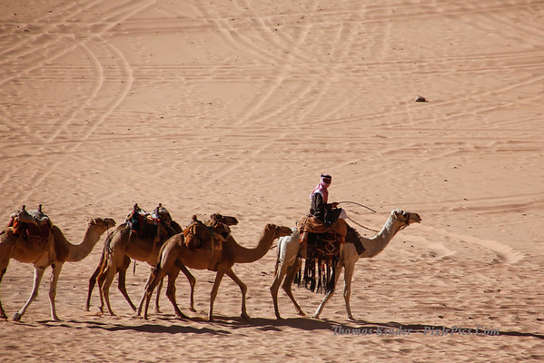 Wadi Rum Jordan October 2013