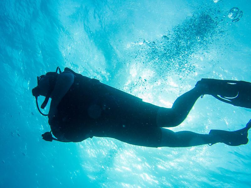 Tulum Trip - Diving 20130405-17-36 _405261904.jpg