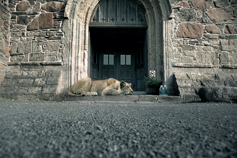 GL_LIONESS_CHURCH.jpg