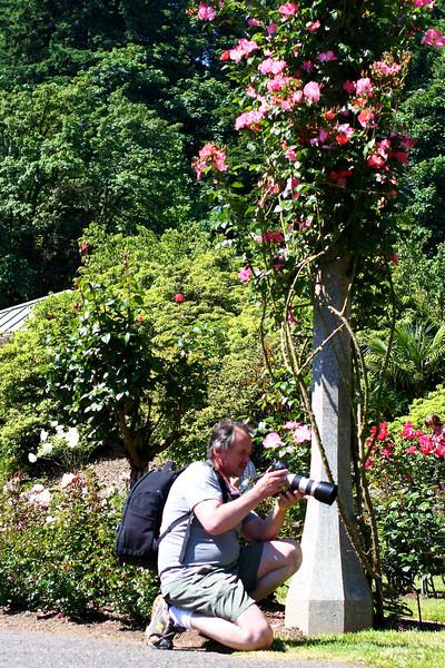 Portland International Rose Test Garden  2255.jpg