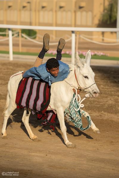 IMGL0768- Horse show.jpg