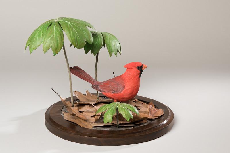 Still Life Dan Holman Birds (14 of 50).jpg