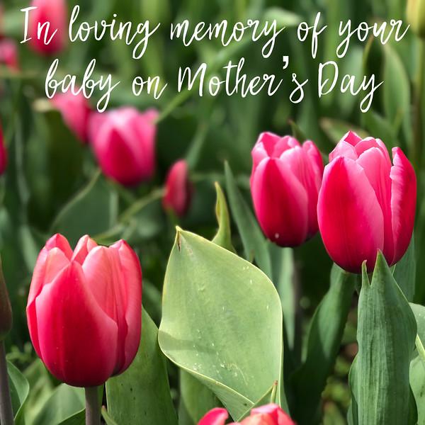 MD loving memory-19