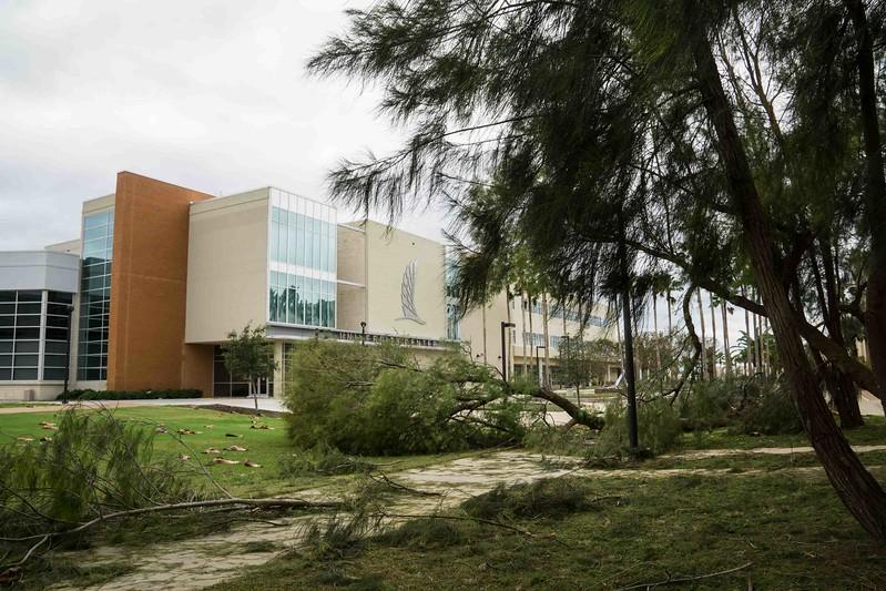 campus-05594.jpg