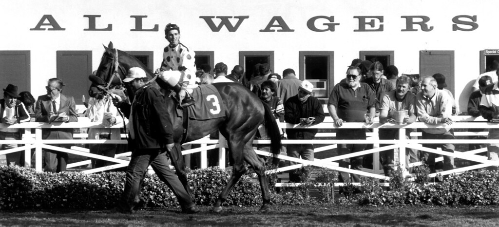 . Bettors look at horses before putting their money down at Hollywood Park.  (12/2/92)    (Los Angeles Daily News file photo)