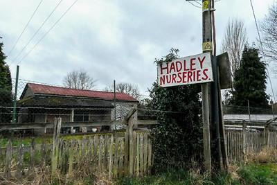 Hadley Nursery