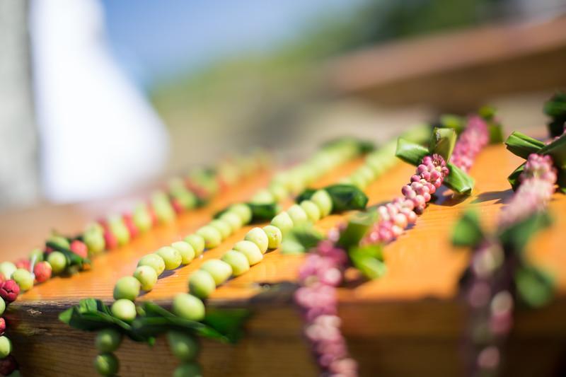 gillin beach kauai wedding-41.jpg