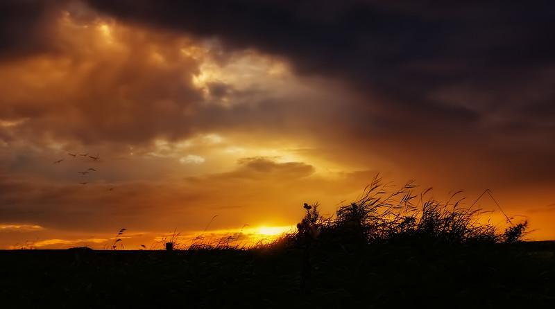 Sunrise and Sunset (72).jpg