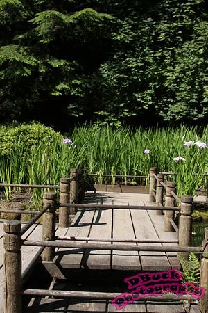 Portland Japanese Garden 6-30-09