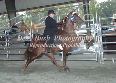 CLASS 6  YOUTH PONIES 17 & UNDER
