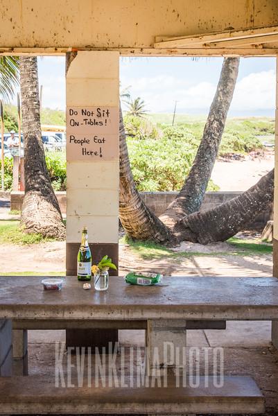 Maui2017-103.jpg
