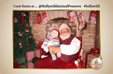 Hollywild Santa Photos - 112519