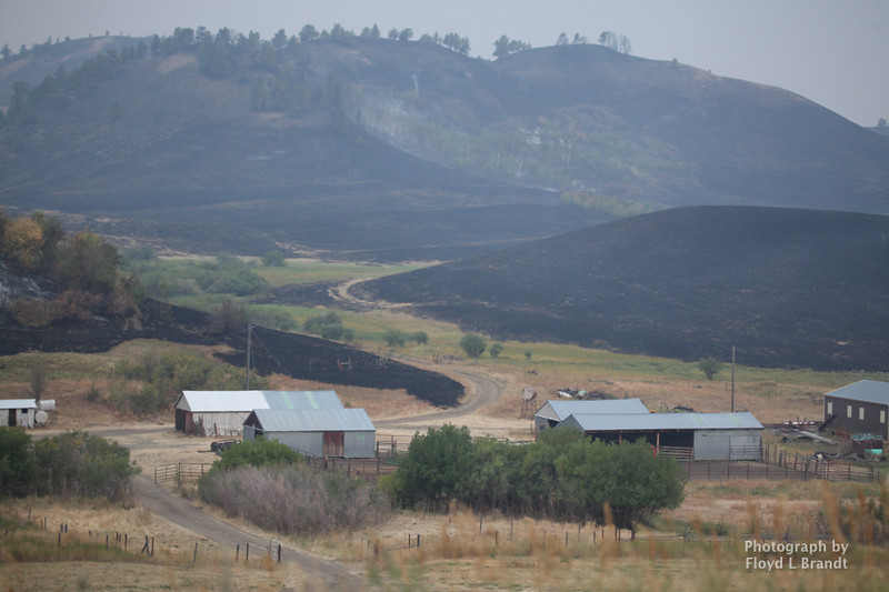 Havre Daily News/Floyd Brandt   Fire burned on all sides of this ranch in Sucker Creek Thursday