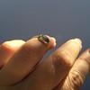 1.56ct Rustic Rose Cut Diamond Bezel Ring, by Single Stone 24