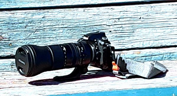 Nikon D750 with Tamron 150-600 with Full Sensor Test