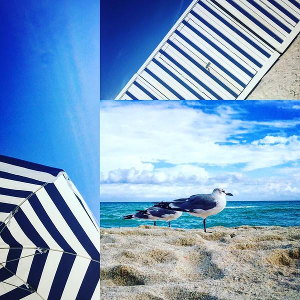 Miami Beach Blue