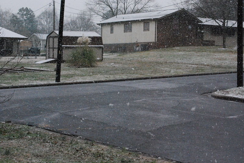 12-18-2009-12-19-2009 Mackie's House 040.JPG