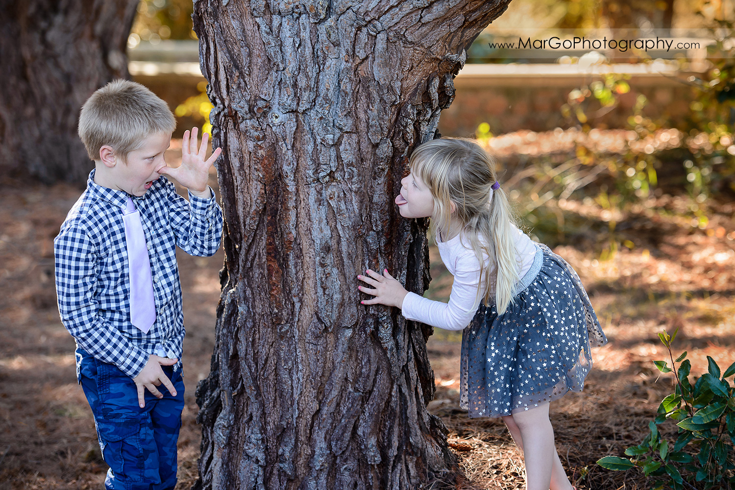 young boy in checkered shirt and little girl in navy blue skirt with golden stars having fun at Mountain View Shoreline Lake Park