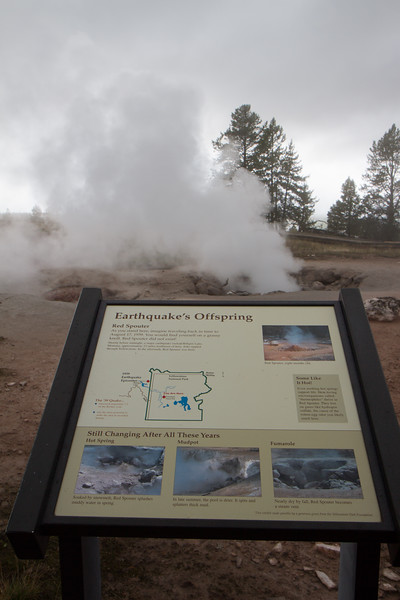 02_Yellowstone National Park_Montana_Wyoming-32.jpg