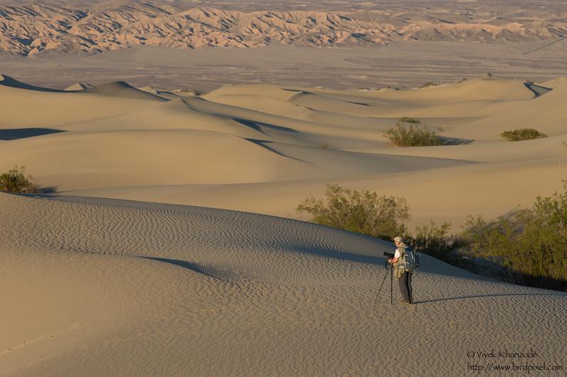 Mesquite Dunes - Death Valley National Park, CA, USA