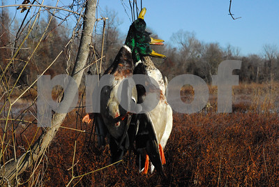knight-delta-waterfowl-another-way-for-hunters-to-help-ducks