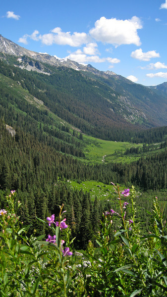 View of Spider Meadows, where we came from.