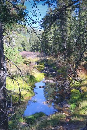 Fall Hike Jackson Meadows